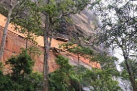 Lion Rock (Sri Lanka)